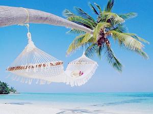 Афоризмы про отдых